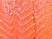 Fish fillet — Stock Photo