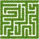 Bushes maze — Stock Vector
