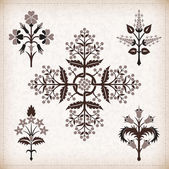 Set of vector ornaments. — 图库矢量图片