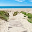 Wooden path over Dunes at a beach in Normandy, France - Stock Photo