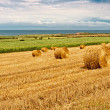Straw Bales near the Sea in Normandy, France — Stock Photo