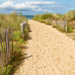 Sand Path to the Beach — Stock Photo