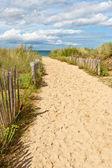 Caminho de areia para a praia — Fotografia Stock
