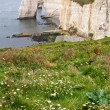 Cliffs of Etretat, Normandy, France — Stock Photo #13850081