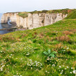 Cliffs of Etretat, Normandy, France — Stock Photo #13850085