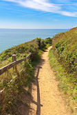 Path along the coastline in carteret, normandy, france — Stock Photo