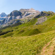 Trekking in the Spanish Pyrenees — Stock Photo #34171381