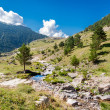 Beautifil landscape with mountain river in the Spanish Pyrenees — Stock Photo