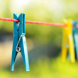 Clothes pegs — Stock Photo #26075033
