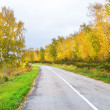 autumn road — Stock Photo #32697483