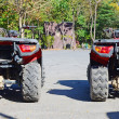 Stock Photo: Row of ATV