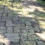 Old pavement — Stock Photo #42234595