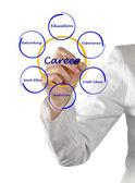 Diagram van beroepssucces — Stockfoto