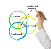 Proteção da propriedade intelectual — Foto Stock