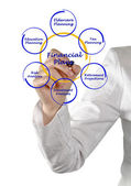 Diagram of financial plan — Stock Photo
