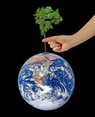 Tree on Earth as a symbol of peace.Elements of this image furnis — Stock Photo