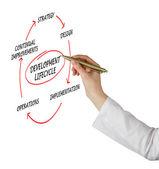 Diagram of development lifecycle — Stock Photo