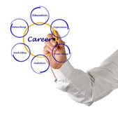 Diagram of career success — Stock Photo