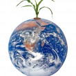 Stock Photo: Corn and earth.Elements of this image furnished by NASA