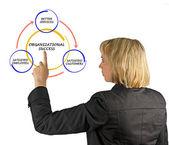 схема управления — Стоковое фото