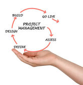 Project management — 图库照片
