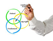 Protection of intellectual property — Stock Photo