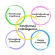 Diagram of emotional intelligence — Foto de stock #13608575