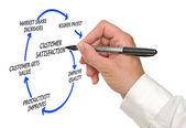 Management diagram — Stockfoto