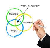 Diagram of career management — Stock Photo