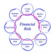 Diagram of financial risks — Stock Photo #13997147