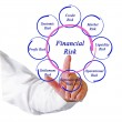 Diagram of financial risks — Stock Photo #14465991