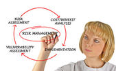 Diagram of risk management — Foto Stock
