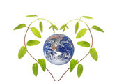 Green love..Elements of this image furnished by NASA — Stock Photo