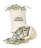 Bag with liability insurance — Stock Photo