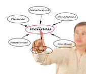 Diagram of wellness — Stock Photo