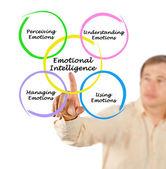 Diagram of emotional intelligence — Foto de Stock