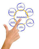 Woman presenting insurance diagram — Stock Photo