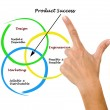 Diagram of product success - Foto de Stock
