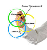 Diagram of career management — 图库照片