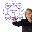 Diagram of financial risks — Stock Photo #15862709