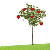 Tree with hearts — Stockfoto