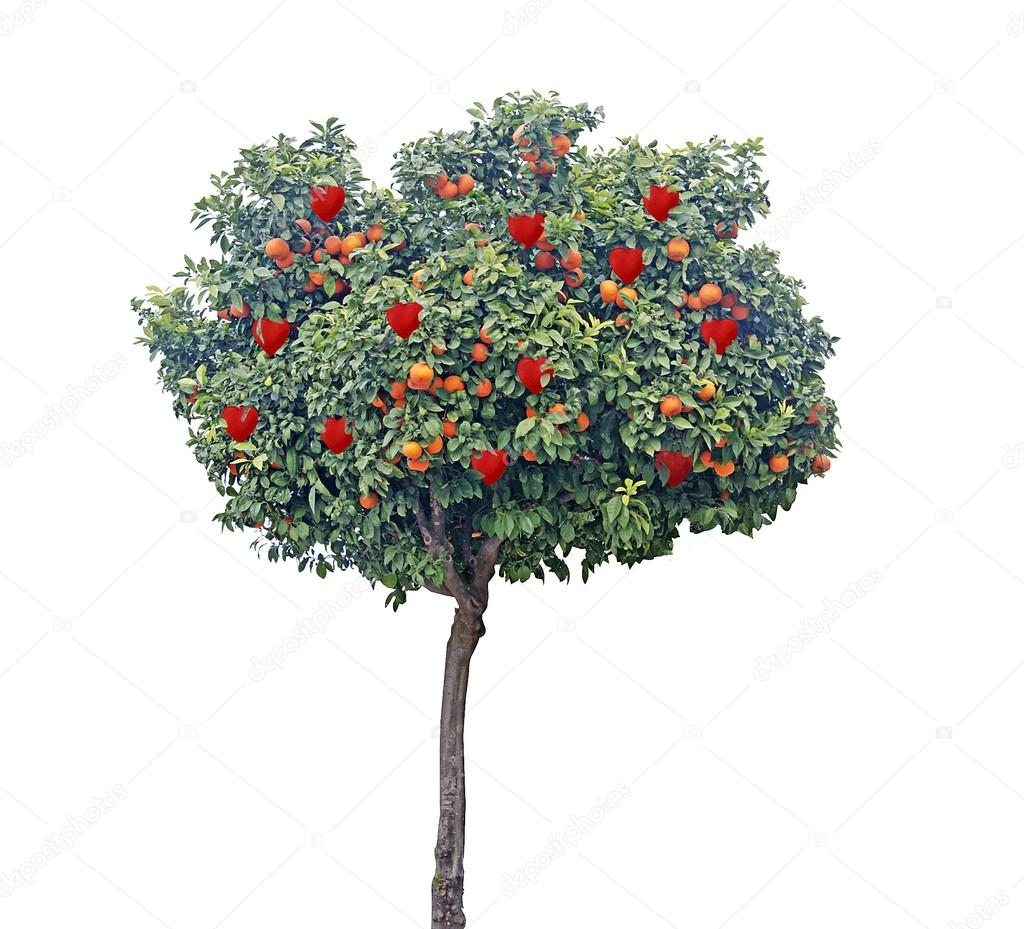 Tree with hearts — Stock Photo #18473649
