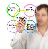 Diagram of healthy life — Stock Photo