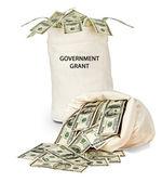 Government grant — Stock Photo