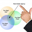 Real estate agent — Stock Photo #20989203