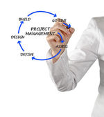 Project management — Foto de Stock