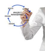 Project management — Zdjęcie stockowe
