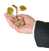 Investing to green business — Stock Photo
