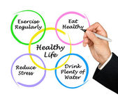 Diagram of healthy life — Stockfoto