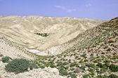 Jeudea desert — Stock Photo